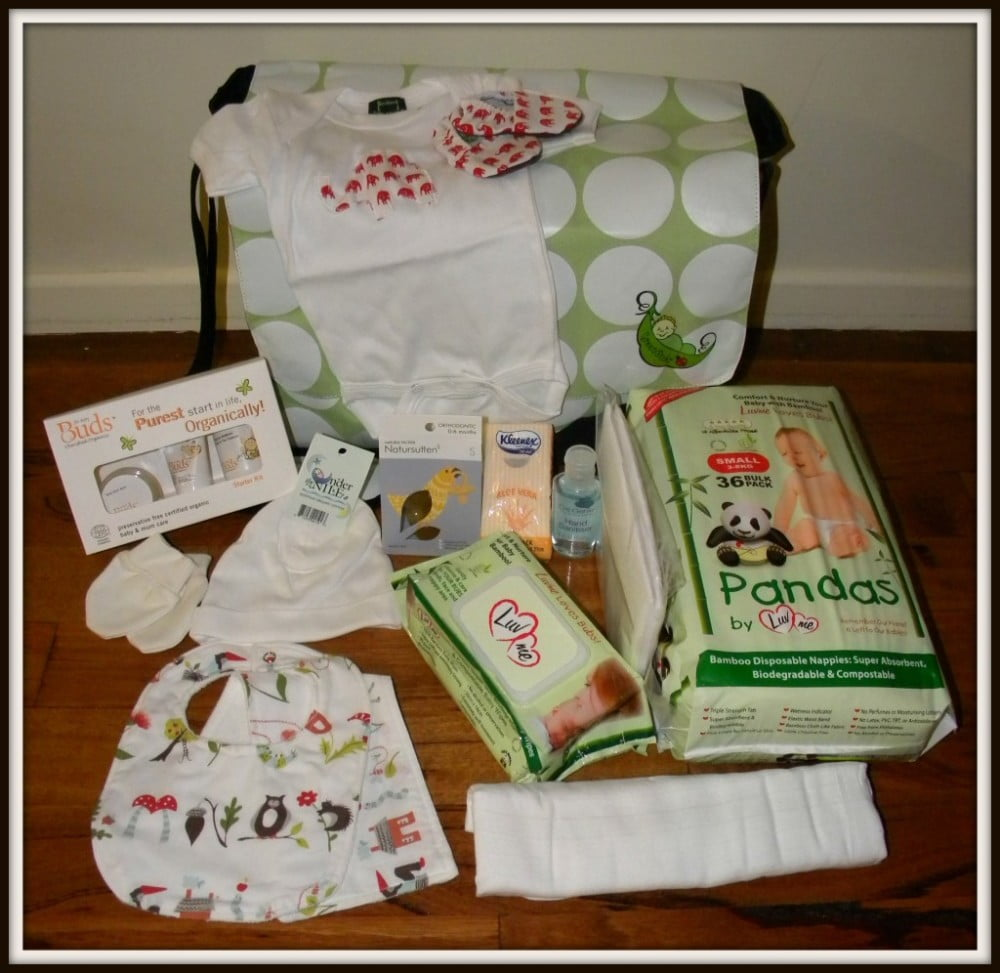 Organic Nappy Bag Hospital Bag